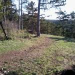 Felkészülés a Bakony szurdok-völgyei futásra IV.  offroad edzésnap