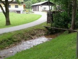 A hegyvidéki klímához ez is kell: gyors-folyású, tiszta vizű hegyi patak, mélyzöld növényzet