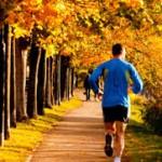 Új szelek járnak – őszi szezon a kertek alatt