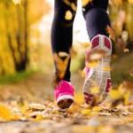 Herbstsaison – Laufsaison bis Jahresende