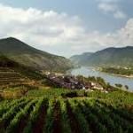 Bringatúra az osztrák Duna völgyében: Wachau