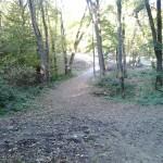 Eredeti természeti környezet, nehezebb a futás itt, ám megéri terepfutónak lenni